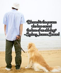 """""""Blessed is the person who has earned the love of an old #dog."""" - Sydney Jeanne Seward #quotes #dogs"""