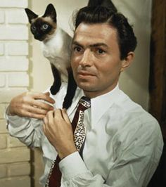 British actor James Mason with a siamese cat circa 1945 Old Hollywood Movies, Old Hollywood Stars, Vintage Hollywood, Siamese Cats, Cats And Kittens, I Love Cats, Cool Cats, James Mason, Actor James
