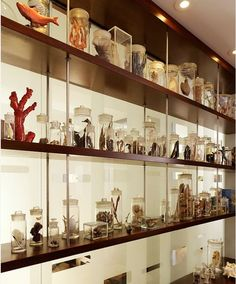 Our 4 Top Tips For Displaying Your Collections!