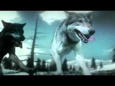Gojira - Wolf Down the Earth (Español - English) + Lyrics (Version HD) - YouTube