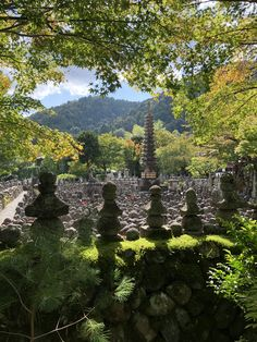 Adashino-Nenbutsuji Temple Kyoto Kyoto, Beautiful World, Temple, Japan, River, Outdoor, Outdoors, Japanese Dishes, Temples