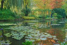 Monet's Garden,Giverny, France Monet Paintings, Impressionist Paintings, Landscape Paintings, Claude Monet, Garden Painting, Garden Art, Monet Garden Giverny, Giverny France, Parks