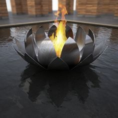 Fire sign (check!).  Contained (check!) Astonishingly beautiful and mesmerizing (check!)