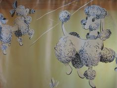 1950's poodle shower curtain....we have one, but I'm too scared to use it in case it falls apart!