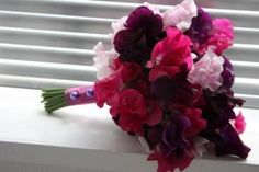 Fuchsia Wedding Color Palettes