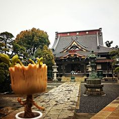 The exquisite Barakisanmyogyoji a beautiful Shinto shrine. Got to love the things you find when you wander the city with no destination in mind. #Exquisite #Beautiful #Architecture #Temple #Shinto #Shrine #Tokyo #Japan #Japon #Nippon #Nihon #Nomad #Nomadic #DancingGroot #Groot #IAmGroot #Marvel #GuardiansOfTheGalaxy #Funko #FunkoPop by thenomadicgroot