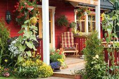 Informativ og god bloggpost som gir deg tips til hvordan du får til en fin hage rundt huset.