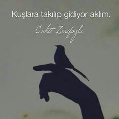 RESİMLİ CAHİT ZARİFOĞLU SÖZLER - Google'da Ara More Than Words, Like Quotes, Poem Quotes, Cool Words, Literature, Poetry, Writing, Sayings, Books