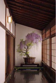 This so very much reminds me of the Japanese house my family & I lived in until we could get base quarters. It was a fantastic experience. Tatami mats, rice paper sliding doors, heavy wooden doors put up during typhoons....