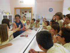 Aprendizaje manipulativo  Colegio San Cristobal