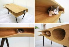 http://www.handimania.com/craftspiration/shared-table-people-cats.html