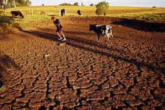 If it doesn't rain in Sao Paulo, Brazil in the next 45 days, the system that provides half the city's drinking water will run dry. Sao Paulo...