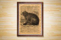 Bear print Animal poster Vintage decor by CrowDictionaryPrints