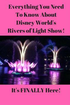 Tips for Disney World'sRiver of Lights! (1)