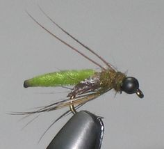 FlyTyingForum.com - Olive Caddis Pupa