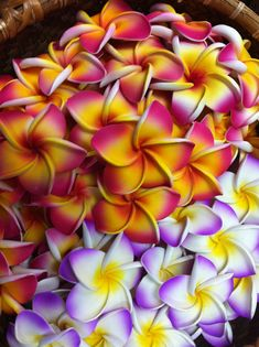 Favorite Flower Scent.  LIke. Ever.