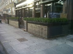 planters with faux hedges for cafes - Google Search