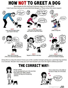 This is a great poster which depicts dog body language cues.