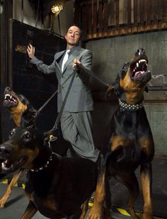 Kevin Spacey and his Dobies