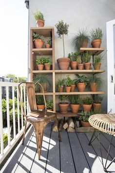 amazing way to have a simple beautiful garden in a small space