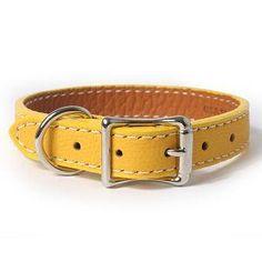 Soft Italian Leather Dog Collar YELLOW
