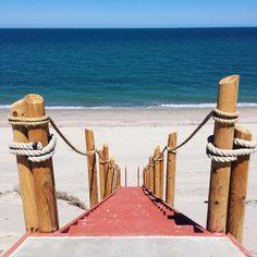 Se dice que en el mar la vida es mas sabrosa ¿Será? Ven y descúbrelo este verano en ¡#SanFelipe el lugar de tu próxima aventura! #Playa #Beach #Baja #BC #BajaCalifornia #DescubreBC #DiscoverBaja #EnjoyBaja #DisfrutaBC #BajaMexico #México #Summer #Verano Visita San Felipe este verano visitando: www.descubresanfelipe.com  Foto-aventura por falkyn