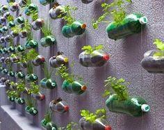 Pinterest Garden Ideas | Potted Vegetable Garden Lifestyle   The Potted  Vegetable Garden Blog