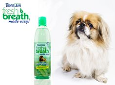 Fresh Breath Water Additive for Dogs & Cats for clean teeth, great breath and healthy gums.  Available on Sale today with Free Shipping @ www.Coupaw.com