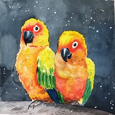Попугайчики рисунок, акварель, скетчбук, птицы, попугай, длиннопост