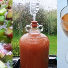 Recipes and instructions for making homemade wine from fruit, flowers, berries, and vegetables. Includes an A-Z of winemaking ingredients.Rhubarb Wine Recipe and full Winemaking Instructions Rhubarb Harvest, Rhubarb Tea, Rhubarb Wine, Salve Recipes, Wine Recipes, Blackberry Trellis, Wooden Compost Bin, Castile Soap Recipes, Homemade Wine