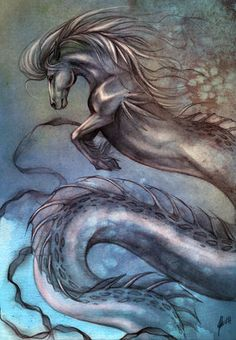 Supernatural water horses intrigue people, and the horse itself was said to have come from water in several mythologies. Some water horses (or horse shapeshifters) are the Kelpie, Hippocampus, Campchurch, nuggle, shoopiltee, njogel, tangi, cabbyl-ushtey, water horse, capall uisge, glashtin, Ceffyl Dŵr, Bäckahästen, the brook horse, nøkken, Nykur, nykur or nennir and the each uisge. The list goes on.