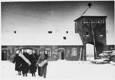 In this incredible picture, a group of female survivors of Auschwitz-Birkenau trudge through the snow as they depart from the camp through the main gate.