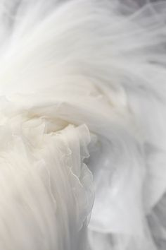 white white white , blanco, weiss, hvit, (k All White, Pure White, White Art, White Light, Boho Stil, White Tulle, White Chiffon, Pink Tulle, White Silk