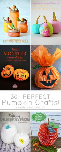 30+ Perfect Pumpkin Crafts at Sweet Rose Studio