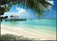 Tobago Reiseführer http://www.abenteurer.net/3038-tobago-reisefuehrer/