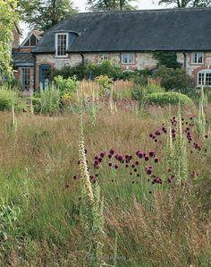 look's like an prairie-garden- Piet Oudolf Prairie Garden, Meadow Garden, Dream Garden, Landscape Architecture, Landscape Design, Dutch Gardens, Natural Garden, Ornamental Grasses, Plantation