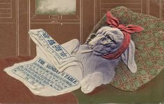 Card celebrating Year of the Rabbit, 1915: Rabbit in bed.