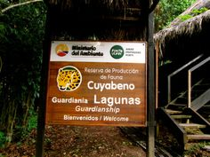 Cuyabeno the best place to be Galapagos Islands, Nature Reserve, Ecology, Ecuador, The Good Place, Travel Inspiration, Places To Visit, Tips, Sustainable Development