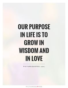 Our Purpose In Life Quotes & Sayings | Our Purpose In Life Picture ...