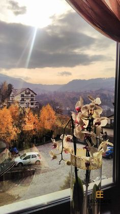 #interior  #autumn  #view #flower #belvedererestaurant #outside #autumnbreeze #gorgeousview #brasov To Go, Indoor, Exterior, Places, Pictures, Painting, Interior, Photos, Painting Art