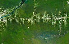 Déforestation en Amazonie, Brésil de Benjamin Grant