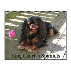 english toy spaniel | ... Spaniel Calendars > King charles / English toy spaniel Wall Calendar