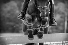 Equine Art, Horse Photography, Horse Jumping, Black and White, 20 x 30. $70.00, via Etsy.
