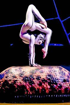 Cirque du Soleil. | about cirque du soleil and ovo cirque to soleil had humble beginnings ...
