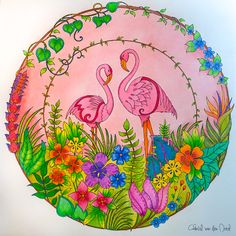 Take a peek at this great artwork on Johanna Basford's Colouring Gallery!