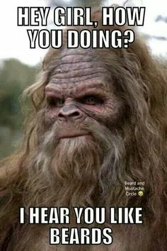 156 Best Bigfoot jokes images in 2018 | Accounting Humor, Bigfoot