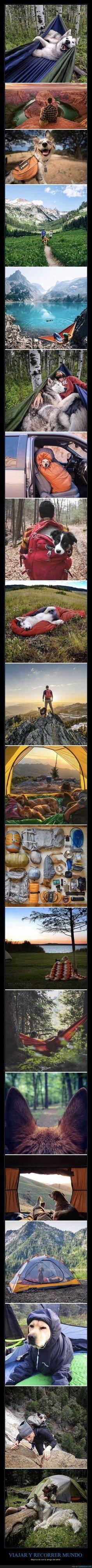Nada mejor que tu perro para viajar - Mejor si es con tu amigo del alma