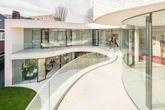 MVRDV wraps glass facade of Rotterdam house around a mature olive tree