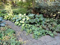 perigo jardim: O Hilderbrand Garden