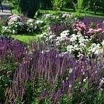 Beautiful garden Зарисовки Коломенского парка, лето 2017 . Пленэр в прекрасном саду. Любимое место художников и фотографов.  #Коломенское #природа #пленэр #художники #вдохновение #пейзаж #скетч #зарисовки #этюд #фотография